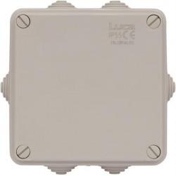 Plastkapsling (100x100x50 mm)