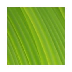 Fiberlogy Easy PET-G Light Green TR 1,75 mm (Sample)